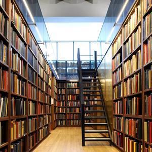 Библиотеки Пронска