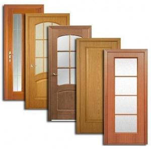 Двери, дверные блоки Пронска