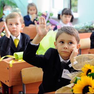Школы Пронска